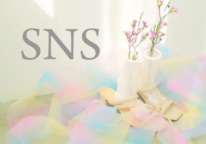 SNS2020